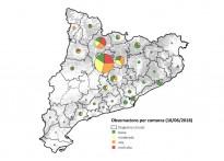 Vés a: Quatre parcs naturals treballen per crear una xarxa d'espais protegits al Pirineu