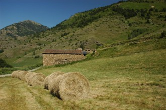 Vés a: El Govern aprova l'ampliació del Parc Natural de l'Alt Pirineu