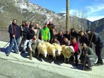 Vés a: L'Escola de Pastors celebra 10 anys de vida aquest dissabte a Arbeca