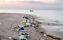 Vés a: La majoria de residus recollits a les platges del Delta de l'Ebre són plàstics