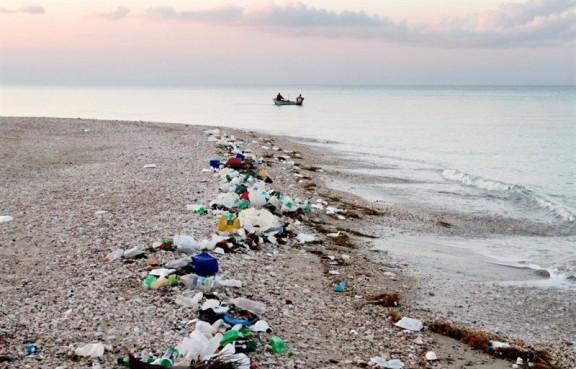 Vés a: El 2050 hi haurà més plàstic que peixos, segons Damià Barceló