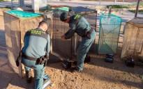 Vés a: La Guardia Civil comissa cinc bussons per a la captura d'angula a la desembocadura de l'Ebre