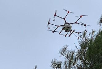 Vés a: Querol utilitza la tecnologia contra la processionària: els drons s'encarreguen del tractament
