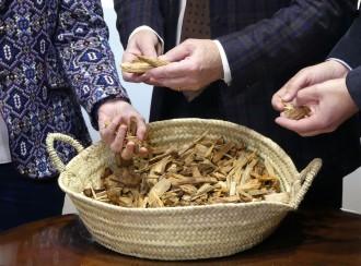 Vés a: La biomassa forestal, combustible de la primera xarxa de calor de proximitat de Tarragona