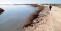 Vés a: El Tribunal Suprem tomba la proposta ebrenca de cabals ambientals per al tram final del Delta