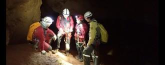 Vés a: La Generalitat impulsa el seguiment hivernal de ratpenats a l'Alta Garrotxa