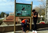 Vés a: Promouen la Declaració d'Arnes per a protegir les abelles i l'apicultura