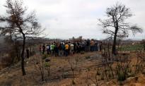Vés a: L'incendi de Ditecsa i la contaminació del Besòs passen a la fiscalia de medi ambient