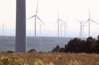 Vés a: Òscar Aparicio (PSC): «És evident que les renovables no són una opció, sinó una obligació»