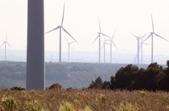 Vés a: La Ponència Ambiental desestima la meitat d'una trentena de nous parcs eòlics projectats a l'Ebre