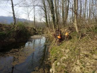 Vés a: L'ACA intervé a la Vall d'en Bas per a netejar la llera del Fluvià després del pas del Gloria