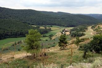 Vés a: Investiguen en boscos del Solsonès el tipus de gestió forestal més resistent