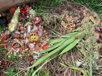 Vés a: Sant Joan les Fonts endegarà un projecte de compostatge comunitari