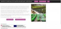 Vés a: Creat un catàleg online de varietats comercials de plantes aromàtiques i medicinals