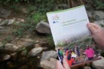 Vés a: El Solsonès amb 43 parelles és la 8a comarca catalana amb més voltors
