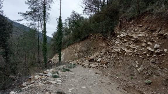 Vés a: Els ajuts per a reparar danys als boscos del temporal Gloria només cobreixen un 40% dels desperfectes