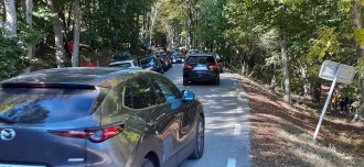 Vés a: Un estudi detecta compostos químics provinents del trànsit de Barcelona al Parc Natural del Montseny