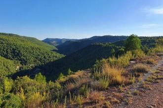 Vés a: Tomben els projectes de dos parcs eòlics al Bages per l'elevat impacte paisatgístic