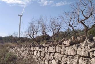 Vés a: La Terra Alta proposa frenar nous projectes eòlics «de gran envergadura»