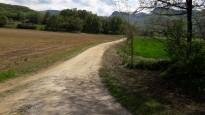 Vés a: Aparcament dissuasiu i busos llançadora: el Parc Natural restringirà l'accés rodat a la punta del cap de Creus