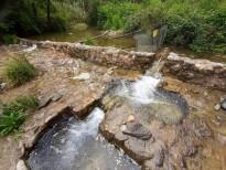 Vés a: L'ACA analitza el funcionament de 3 connectors fluvials a la Garrotxa