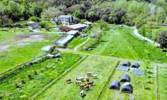 Vés a: Un hort regeneratiu emet un 40% menys de CO₂ a l'any que un convencional