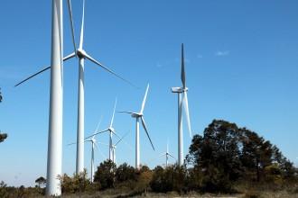 Vés a: La Xarxa Europea d'Acció Climàtica avisa que els conflictes locals per les renovables estan «sobrevalorats»