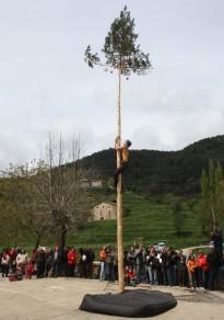 Vés a: La festa més forestal