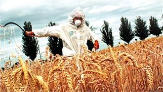Vés a: Blasmen el nou decret català sobre organismes modificats genèticament