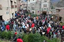 Vés a: La Fira de l'Avet d'Espinelves perd visitants però manté la xifra de vendes