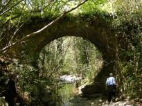 La Generalitat i la Diputació acorden ampliar el Parc Natural del Montseny
