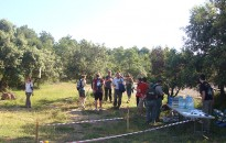 Vés a: Caminada popular a Sant Feliu Sasserra