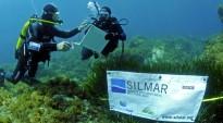 Vés a: Perilla la fauna marina per una prospecció a la Mar Catalana