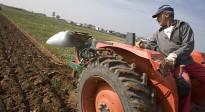 Unnim creix més del 60% en el negoci d'ajudes a la pagesia