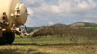 Vés a: El nou decret de gestió de les dejeccions ramaderes, a consulta pública
