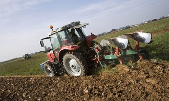 Unió de Pagesos lamenta les pèrdues ocasionades per les altes temperatures