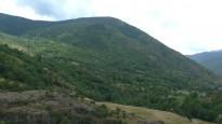 Vés a: Quatre nous cadells d'ós bru a l'Alt Pirineu