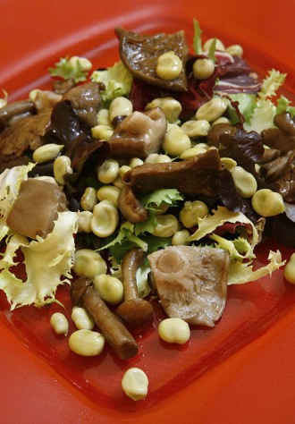 Tot a punt per a l'inici de les Jornades Gastronòmiques del Bolet de l'Alta Ribagorça