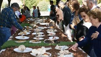 Sant Boi de Lluçanès planta cara a la mala temporada de bolets