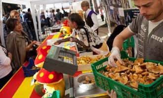 La Festa del Bolet de Seva prepara unes 2.500 tapetes gastronòmiques