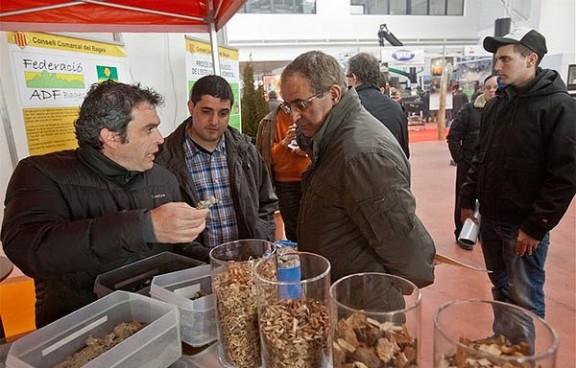 La Fira de Biomassa Forestal de Vic reunirà més de cent empreses
