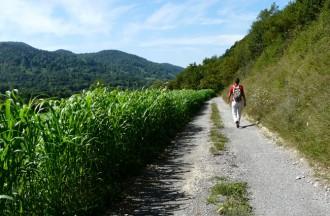 La ruta del Ter ja enllaça Osona amb el Ripollès