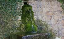 Vés a: Catalunya reutilitza més de 30 hm3 d'aigua el 2016, prop d'un 4% de més
