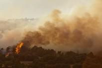 Vés a: Els humans influeixen tant com el clima en el risc d'incendi forestal