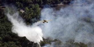 El Consorci Forestal mostra el condol per les víctimes dels incendis
