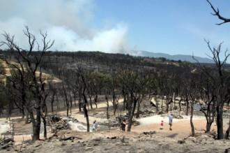Extingit l'incendi forestal de l'Alt Empordà