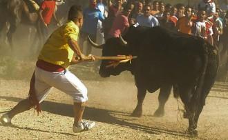 Vés a: Sang, crits i cops de roc al Toro de La Vega