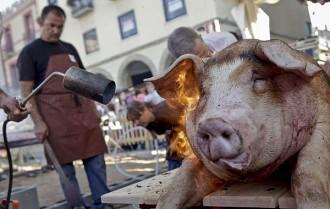 La Festa del Porc i la Cervesa de Manlleu aposta per millorar la qualitat