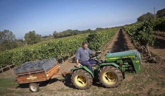 Els tractors podran circular per la C-51 durant el període de la verema