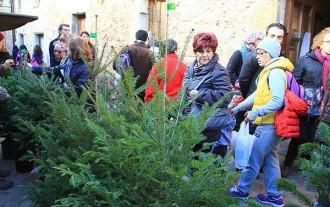 Espinelves celebra la Fira de l'Avet durant 10 dies
